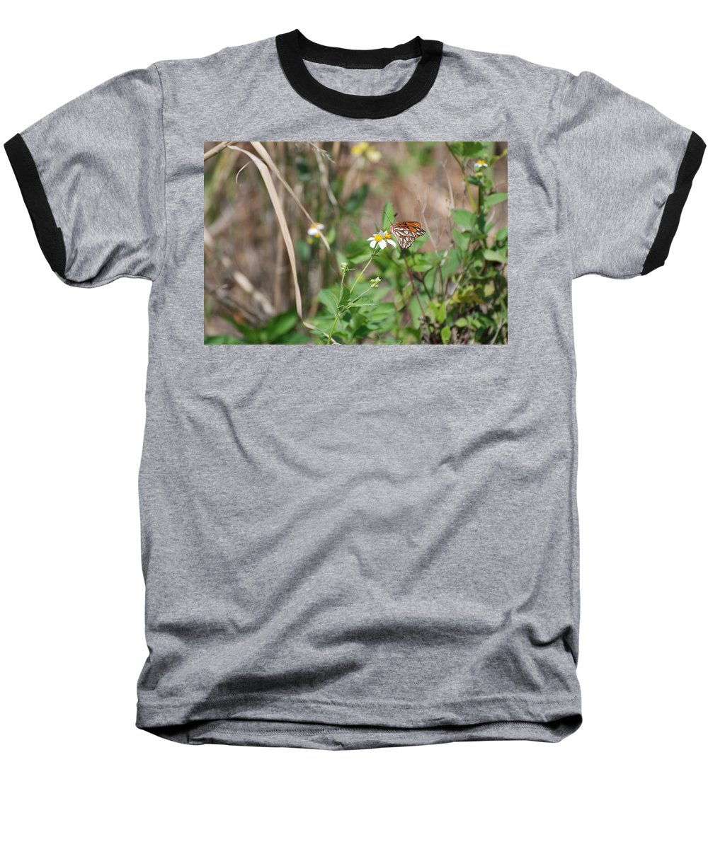 Butterfly Baseball T-Shirt featuring the photograph White Butterfly by Rob Hans
