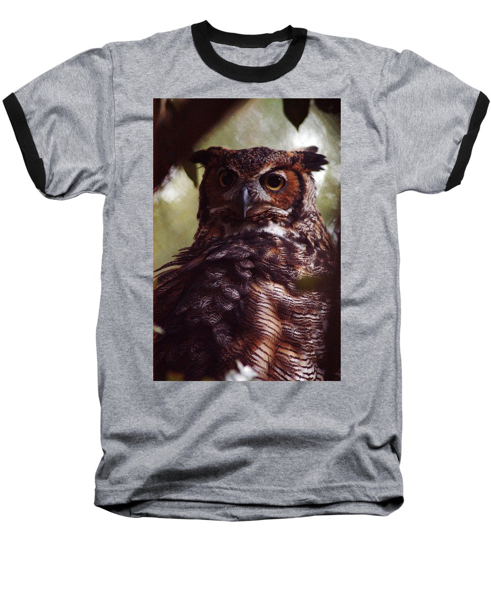 Clay Baseball T-Shirt featuring the photograph Who by Clayton Bruster