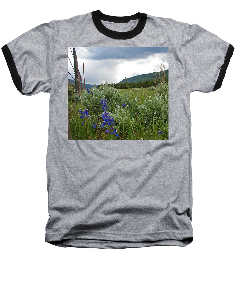 Wild Flowers Baseball T-Shirt featuring the photograph Wild Delphinium by Heather Coen