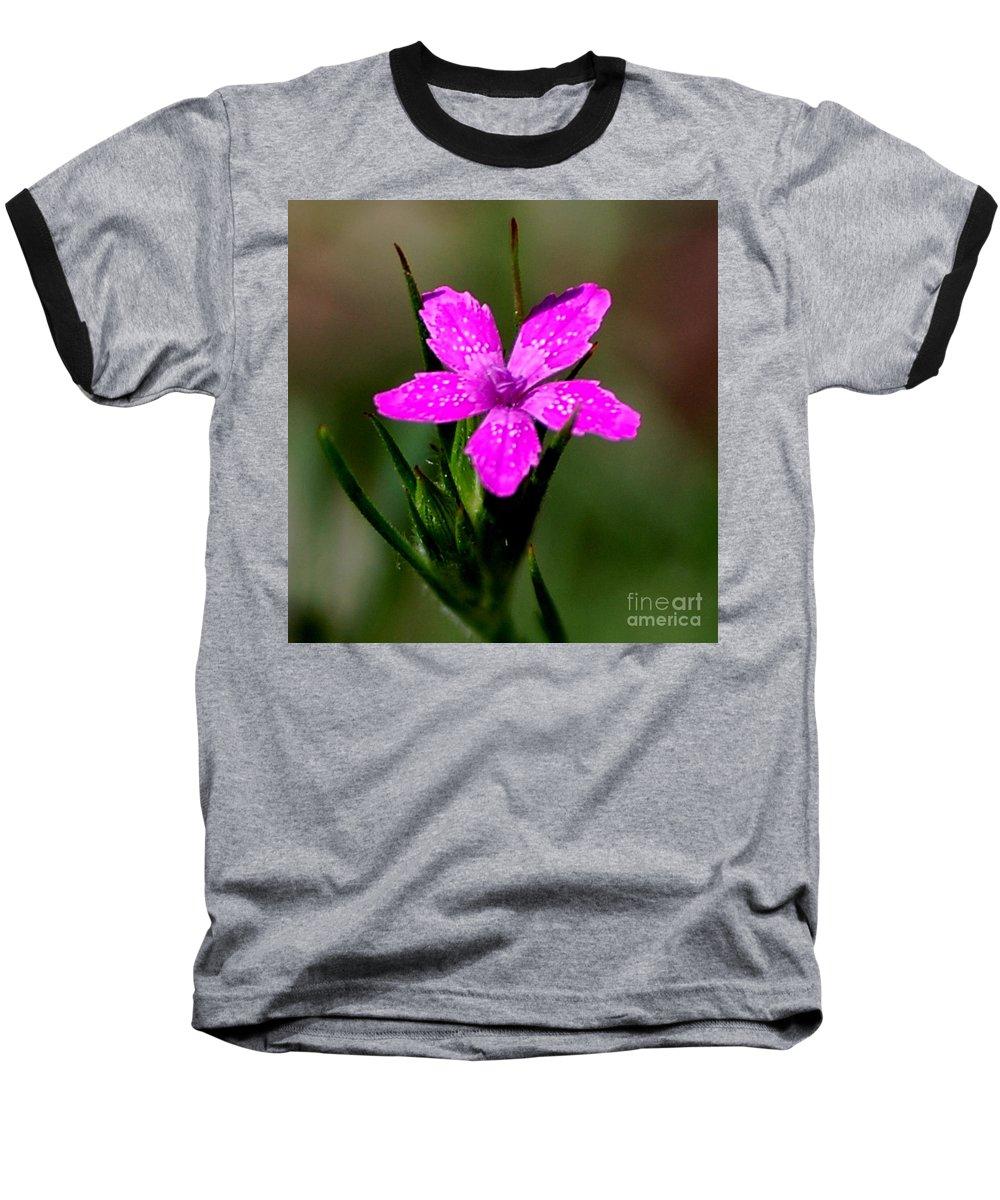 Digital Photo Baseball T-Shirt featuring the photograph Wild Pink by David Lane