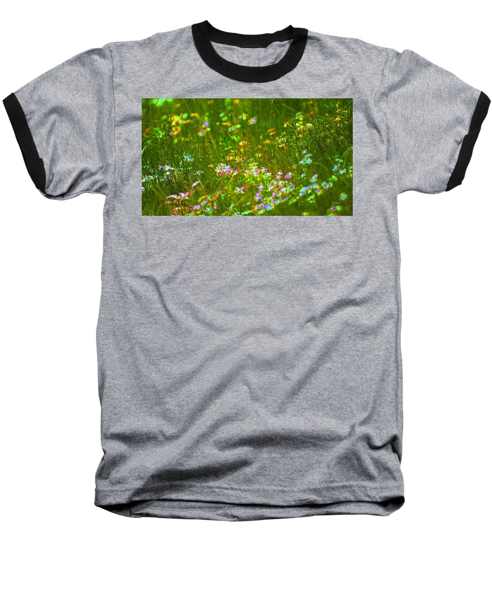 Wildflower Baseball T-Shirt featuring the photograph Wildflower Field by Heather Coen
