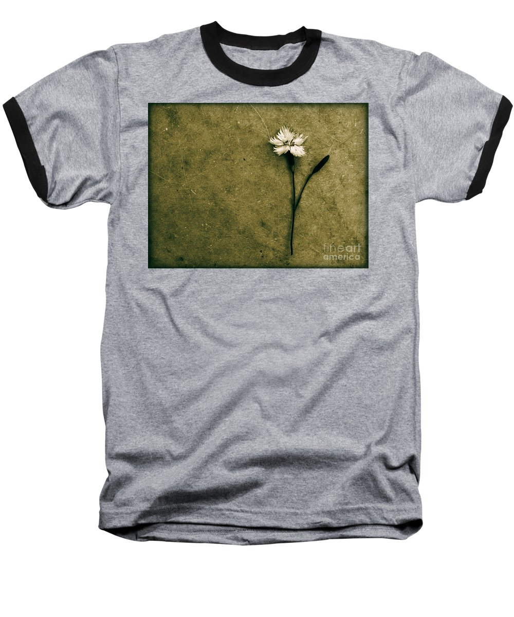 Dipasquale Baseball T-Shirt featuring the photograph Will You Stay With Me Will You Be My Love by Dana DiPasquale