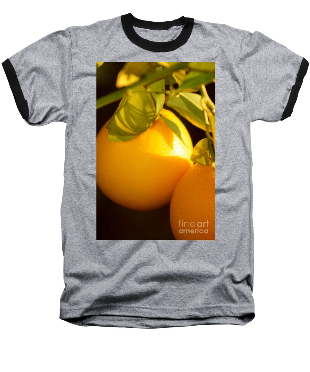 Fruit Baseball T-Shirt featuring the photograph Winter Fruit by Nadine Rippelmeyer
