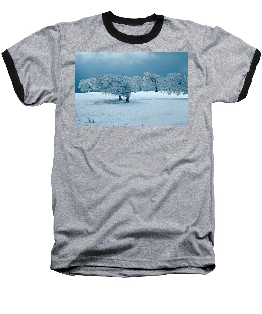 Winter Baseball T-Shirt featuring the photograph Winter Wonderland by Flavia Westerwelle