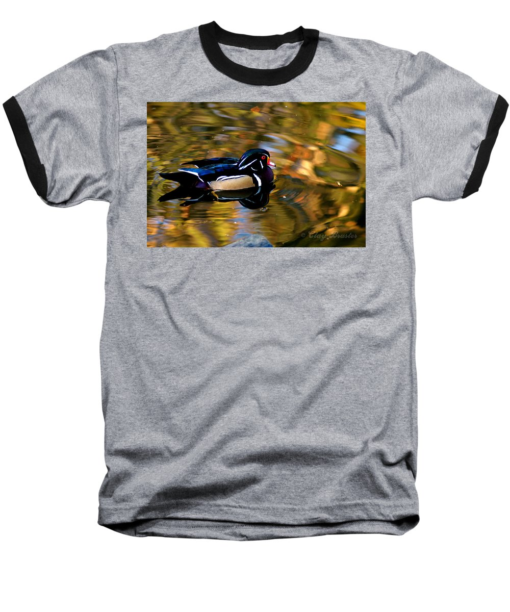 Clay Baseball T-Shirt featuring the photograph Wood Duck by Clayton Bruster