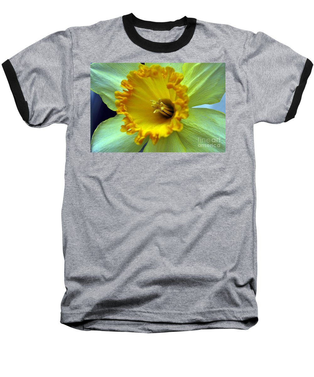 Clay Baseball T-Shirt featuring the photograph Yellow Floral by Clayton Bruster