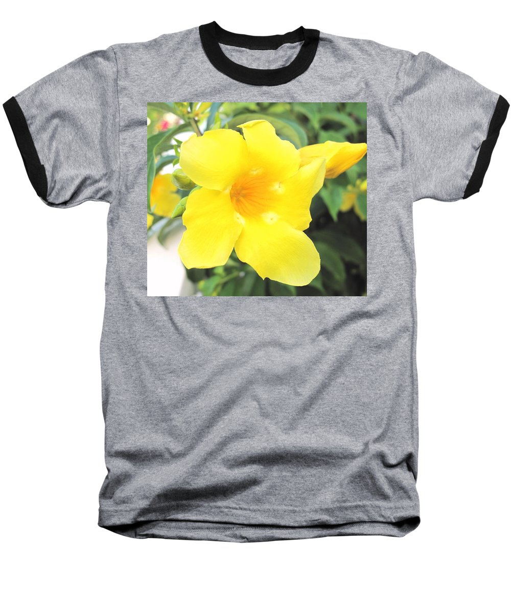 Yellow Baseball T-Shirt featuring the photograph Yellow Hibiscus St Kitts by Ian MacDonald