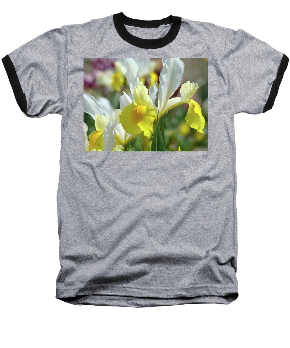 �irises Artwork� Baseball T-Shirt featuring the photograph Yellow Irises Flowers Iris Flower Art Print Floral Botanical Art Baslee Troutman by Baslee Troutman