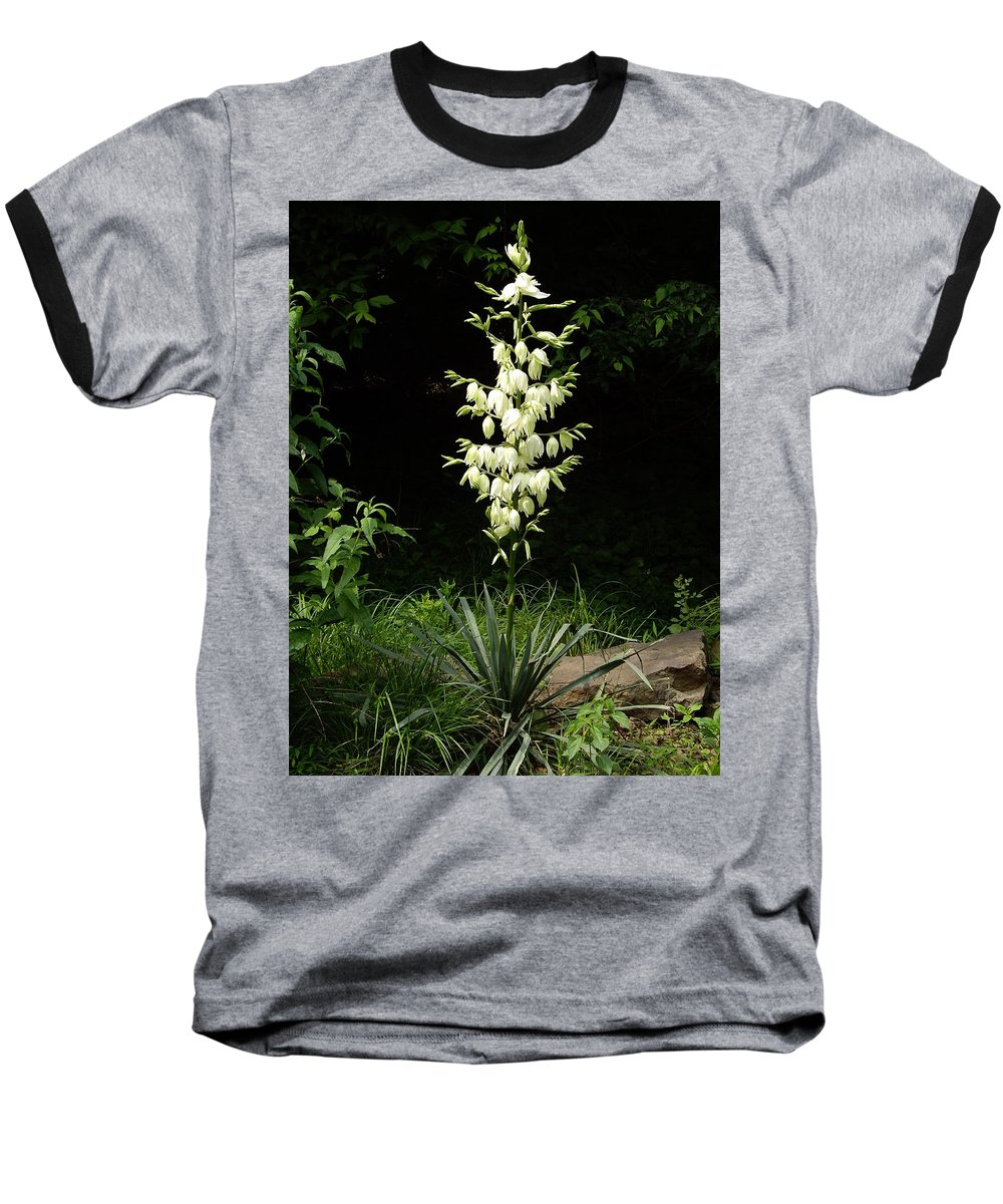 Yucca Baseball T-Shirt featuring the photograph Yucca Blossoms by Nancy Ayanna Wyatt