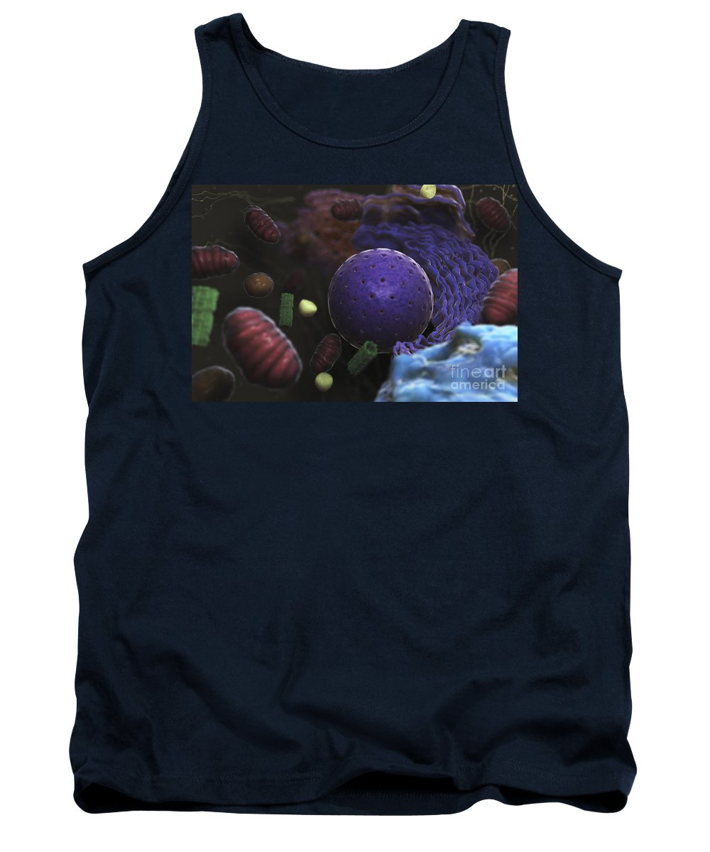 Cells Tank Top featuring the photograph Inner Workings Of A Human Cell by Science Picture Co