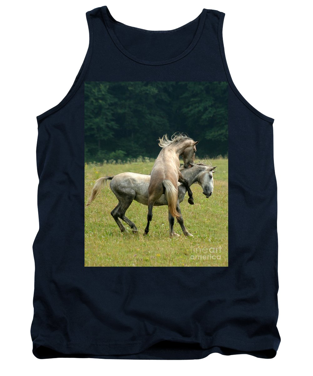 Horse Tank Top featuring the photograph The Bite by Angel Ciesniarska