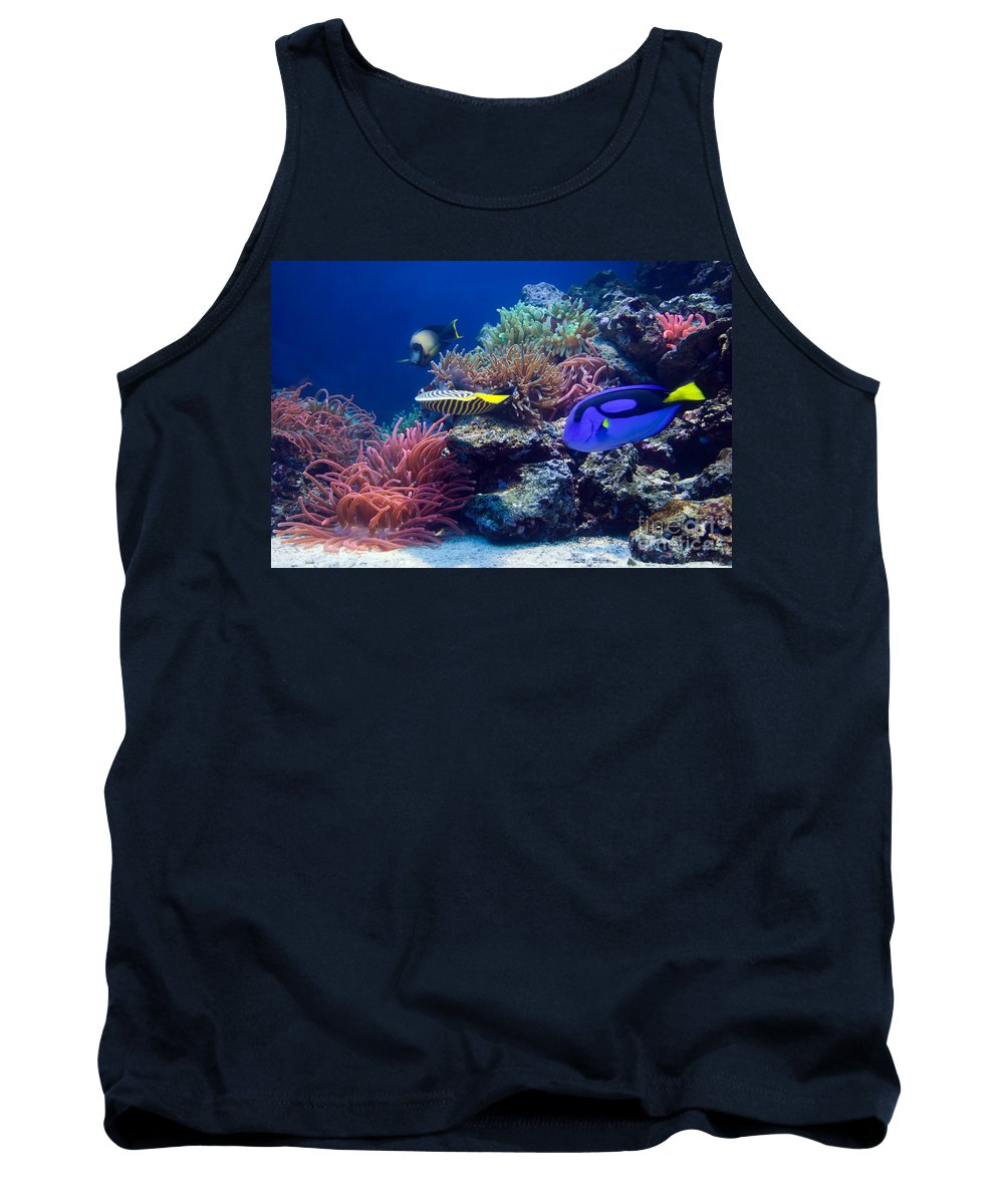 Fish Tank Top featuring the photograph Underwater Life by Michal Bednarek