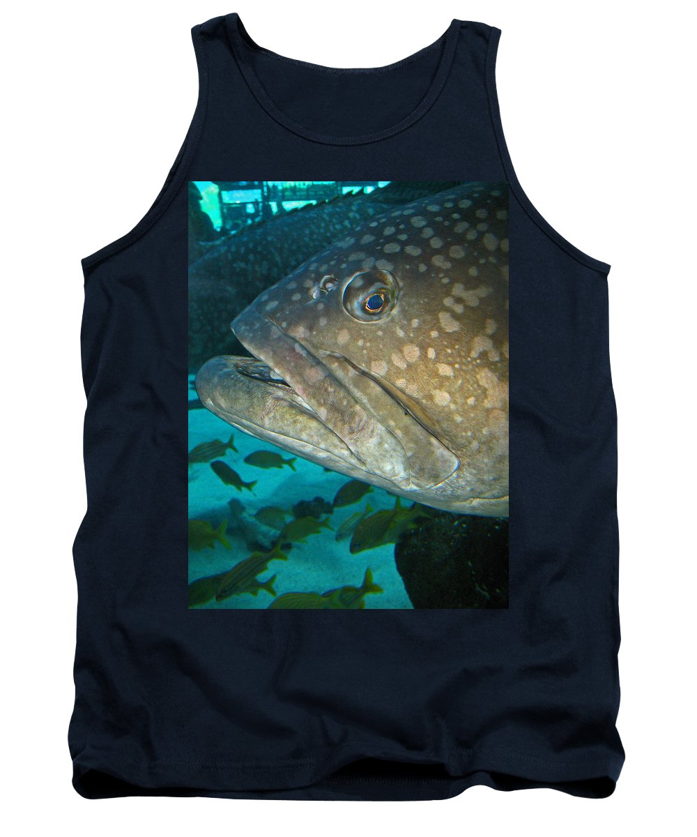 Grouper Tank Top featuring the photograph Blue-eyed Grouper Fish by Connie Fox