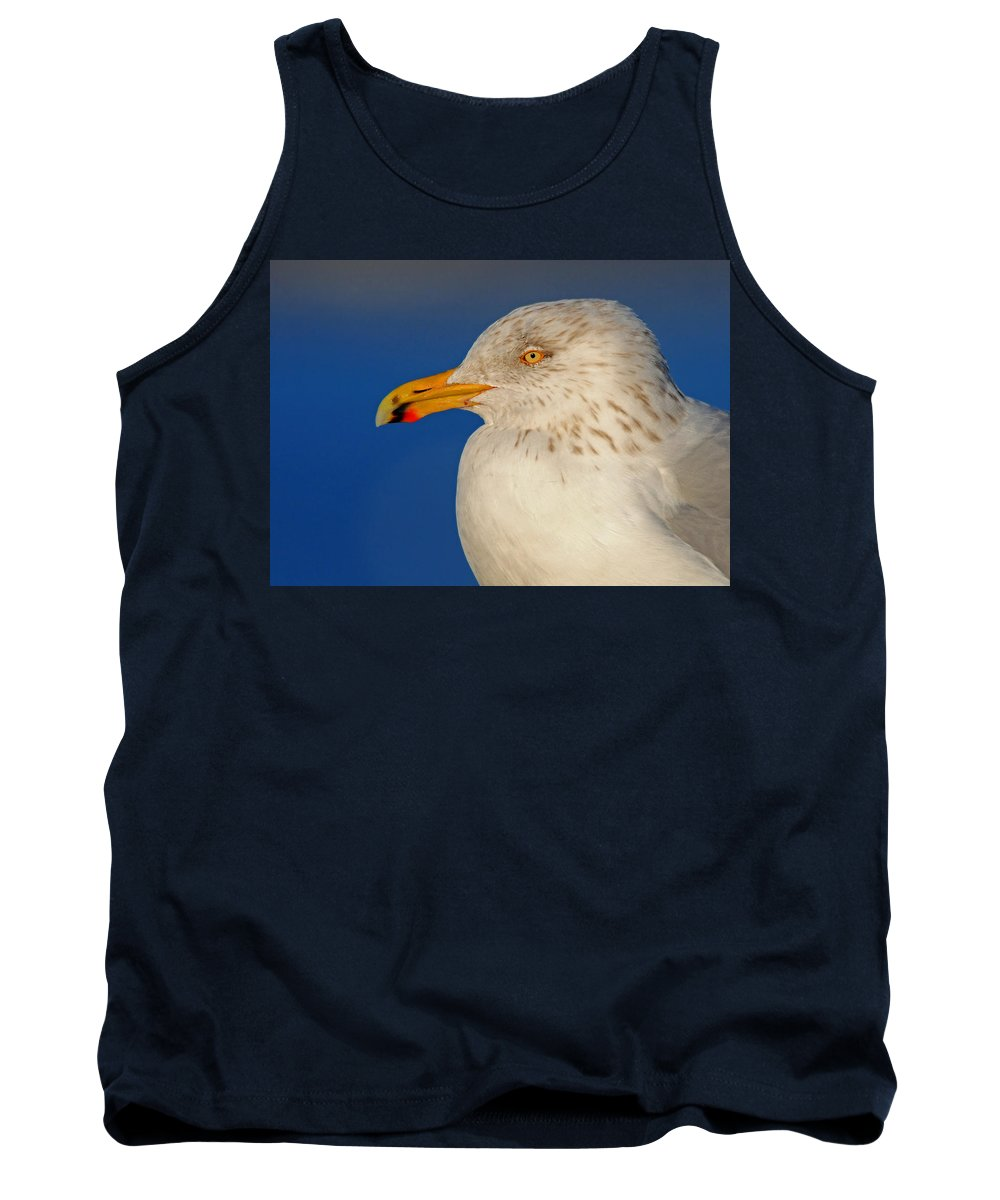 Gull Tank Top featuring the photograph Gull Portrait by Dave Mills