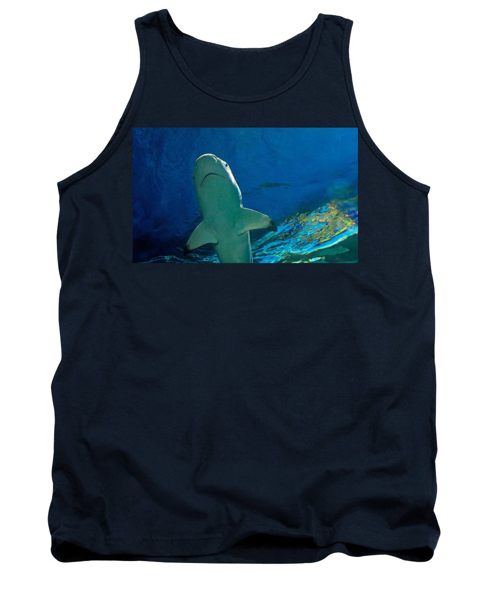 Shark Tank Top featuring the photograph Jaws by Eti Reid