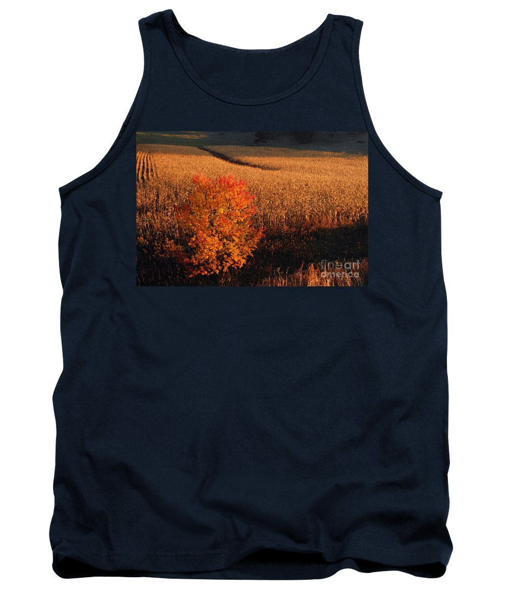 Photography Tank Top featuring the photograph Maple And Cornfield At Dawn by Larry Ricker