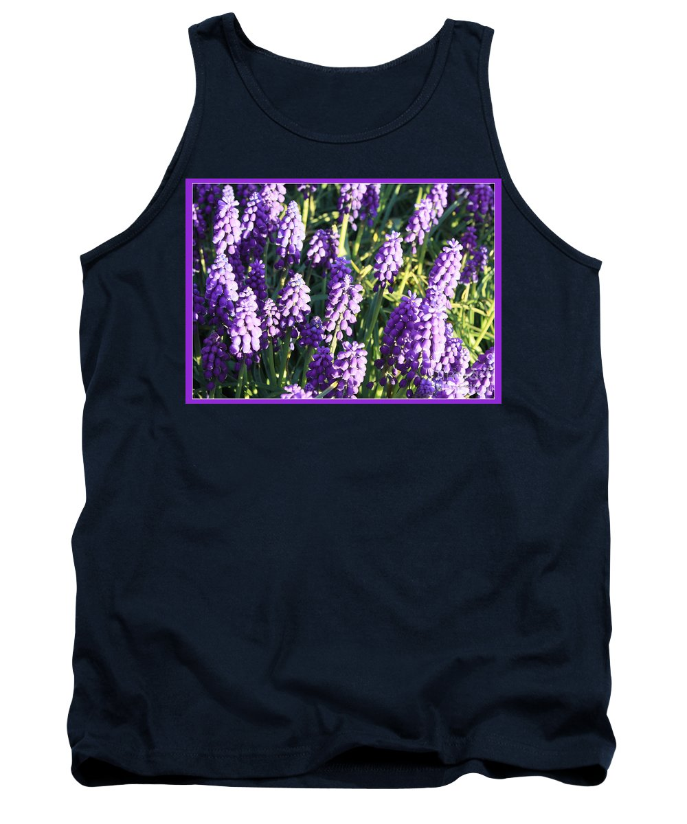 Grape Hyacinth Tank Top featuring the photograph Purple Grape Hyacinth by Carol Groenen