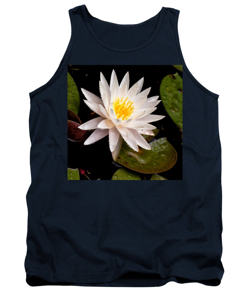 Cindy Archbell Tank Top featuring the photograph Raindrop Water Lilly by Cindy Archbell