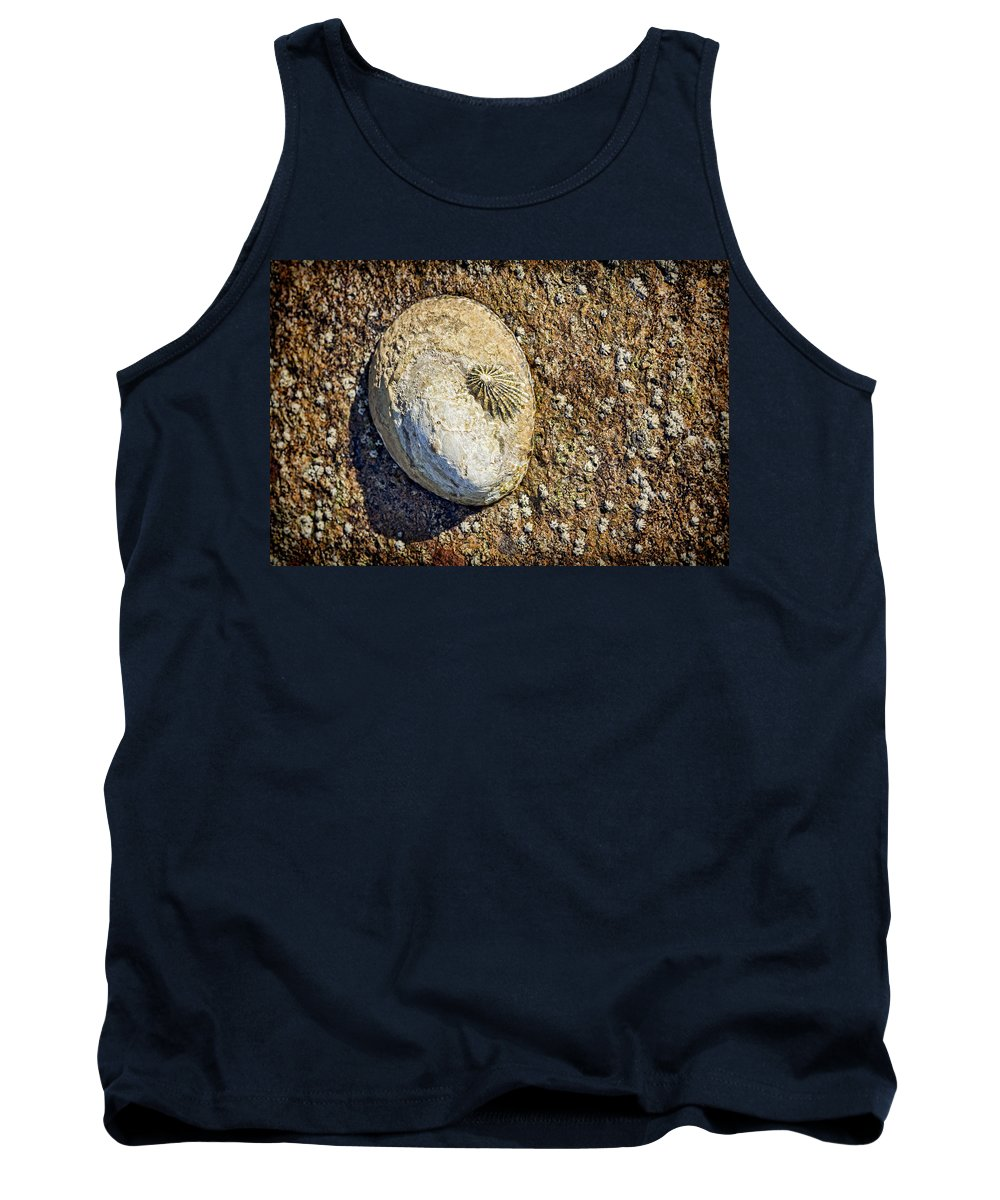 Gastropods Tank Top featuring the photograph Sea Shell By The Seashore by Kelley King