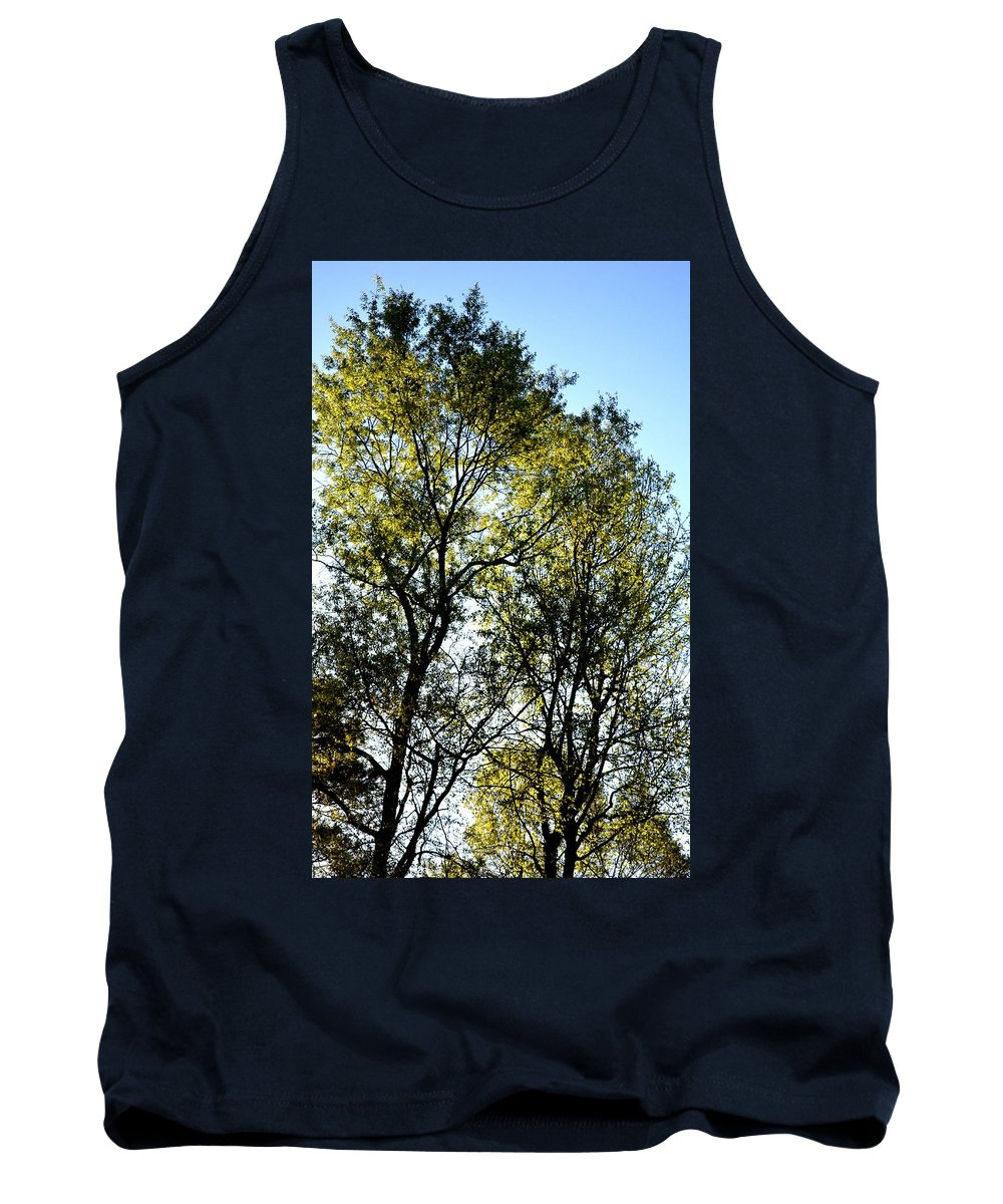 Sunlit 14-1 Tank Top featuring the photograph Sunlit 14-1 by Maria Urso