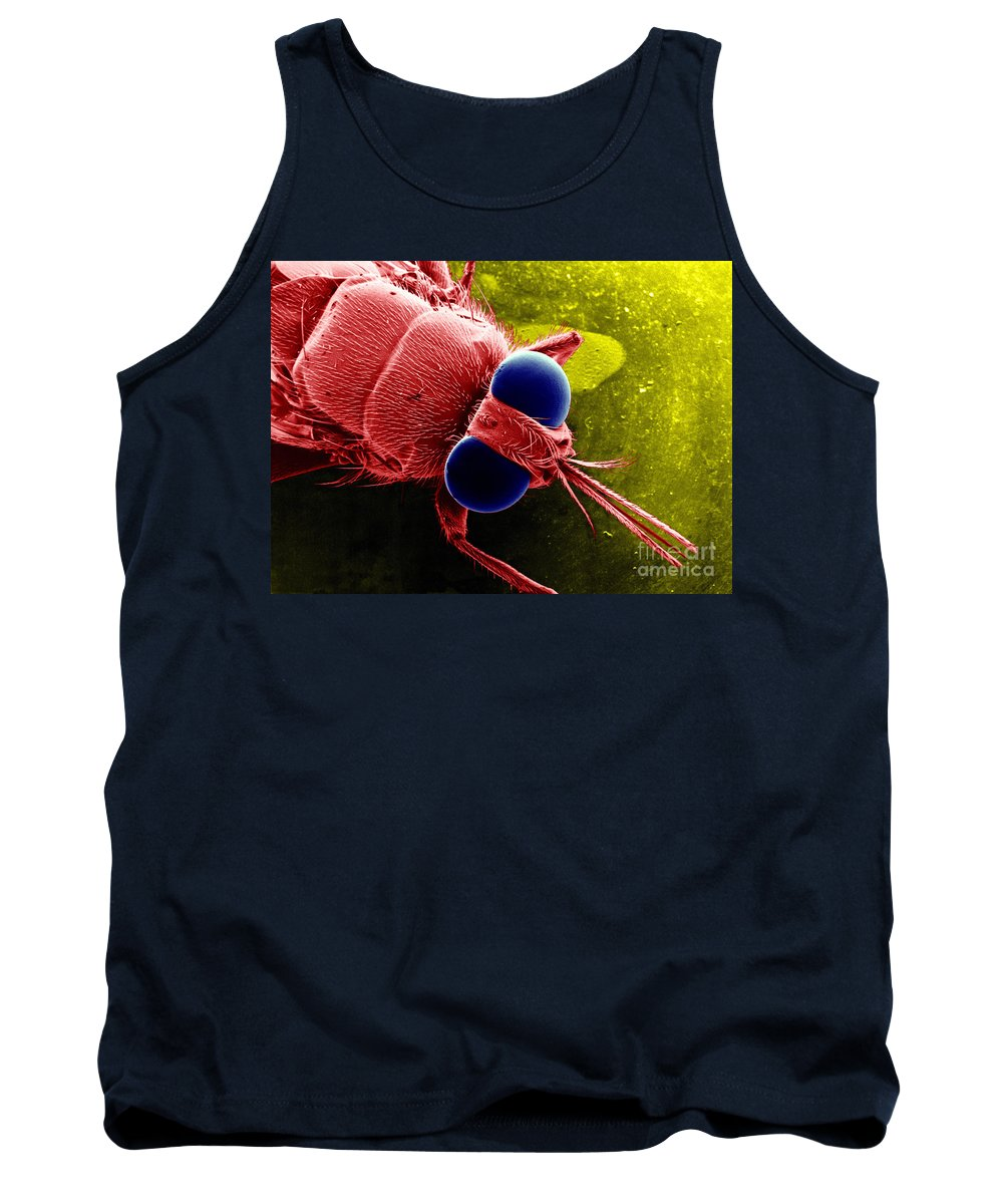 Scanning Electron Microscope Tank Top featuring the photograph Tse Tse Fly by Bsip
