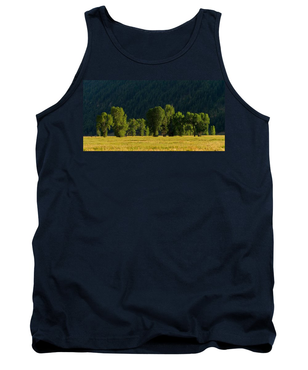Wyoming Tank Top featuring the photograph Under The Trees by Dustin LeFevre