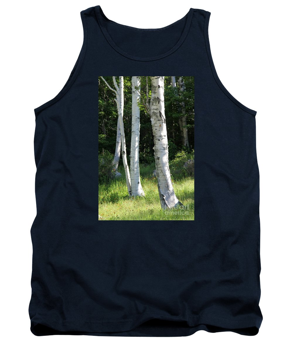 Birch Tank Top featuring the photograph Birches On A Meadow by Christiane Schulze Art And Photography