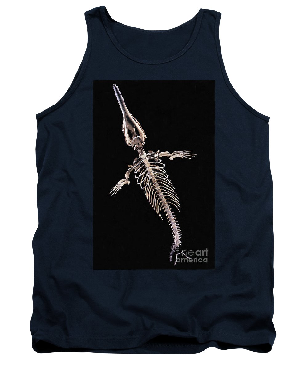 Fossil Tank Top featuring the photograph Dorudon Skeleton by Photo Researchers