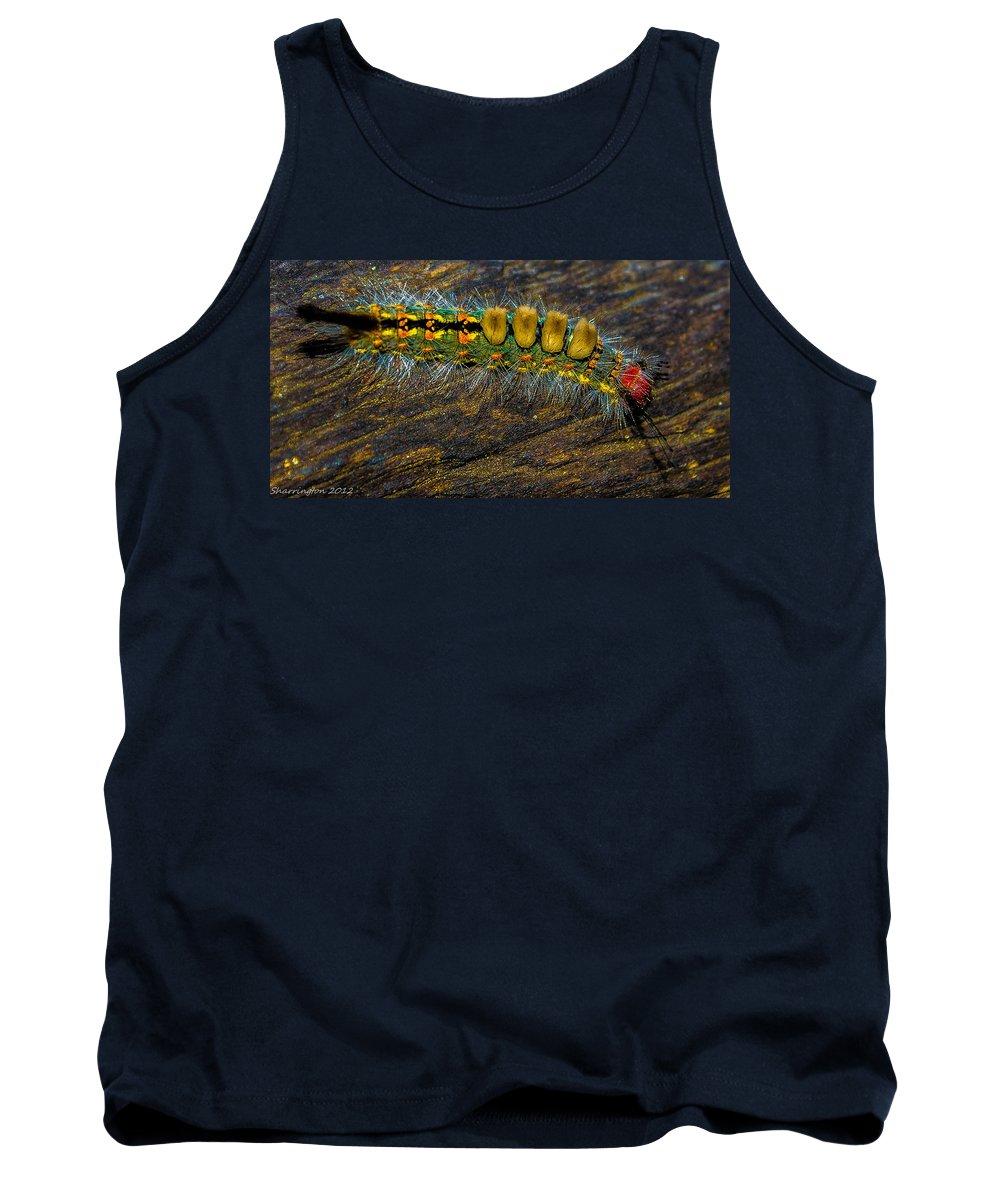 Macro Tank Top featuring the photograph Fuzzy Caterpillar by Shannon Harrington