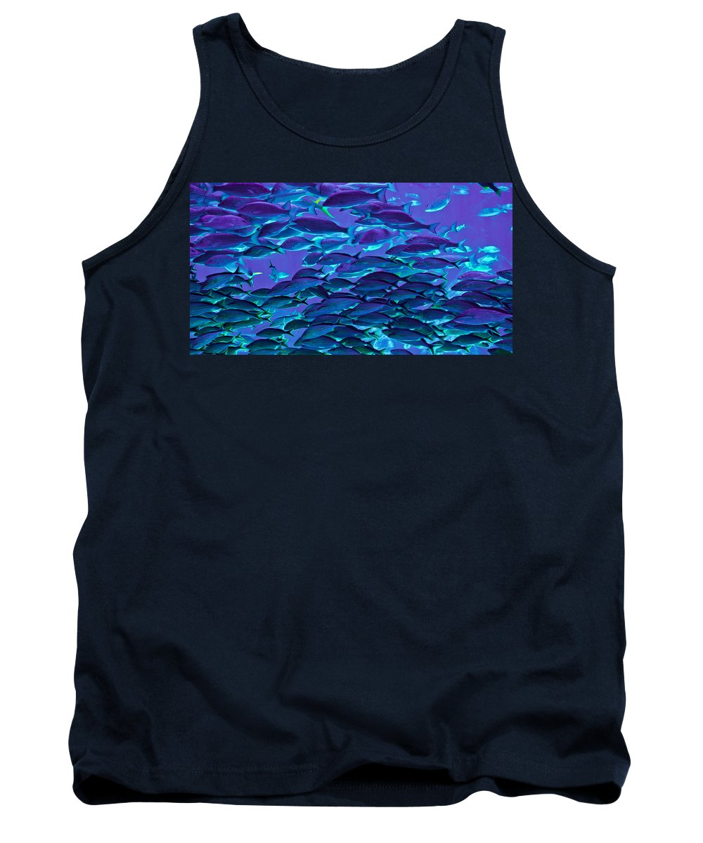 Fish Tank Top featuring the photograph School Daze by DigiArt Diaries by Vicky B Fuller
