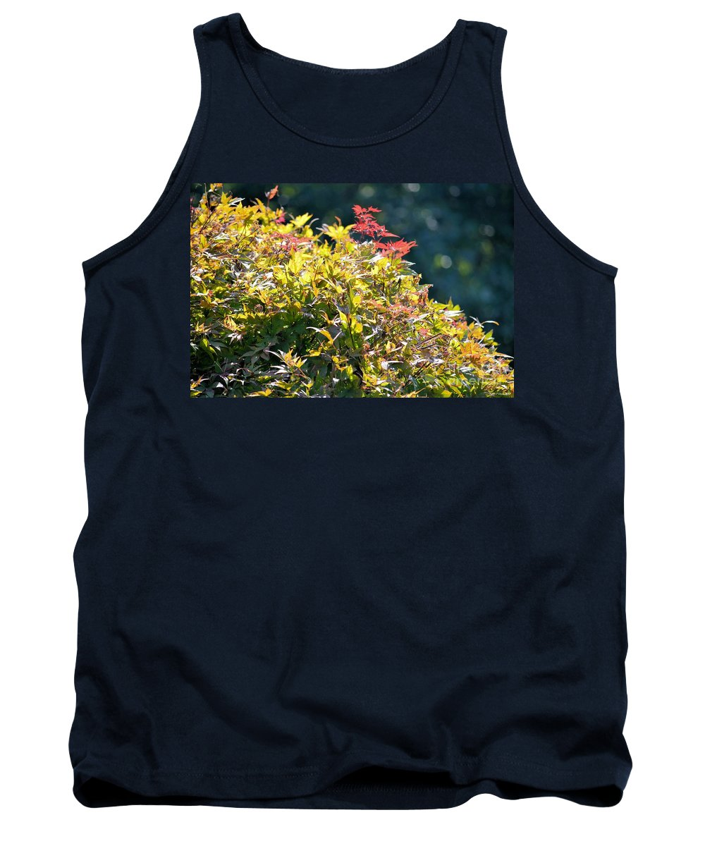 Sunlit Tank Top featuring the photograph Sunlit by Maria Urso