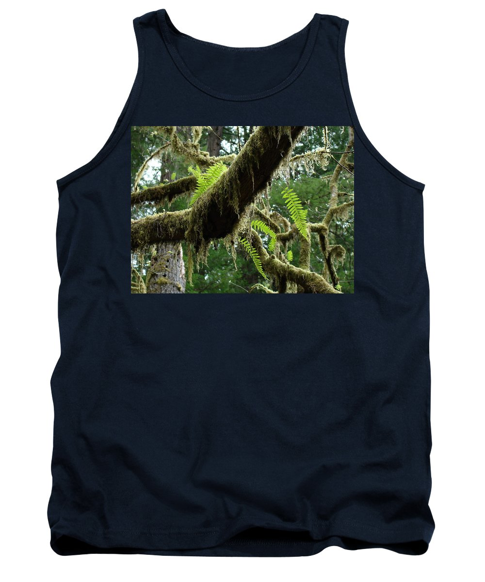 Fern Tank Top featuring the photograph Office Art Forest Ferns Green Fern Giclee Prints Baslee Troutman by Baslee Troutman