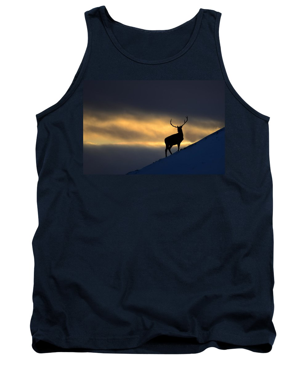 Stag Silhouette Tank Top featuring the photograph Stag Silhouette by Gavin MacRae