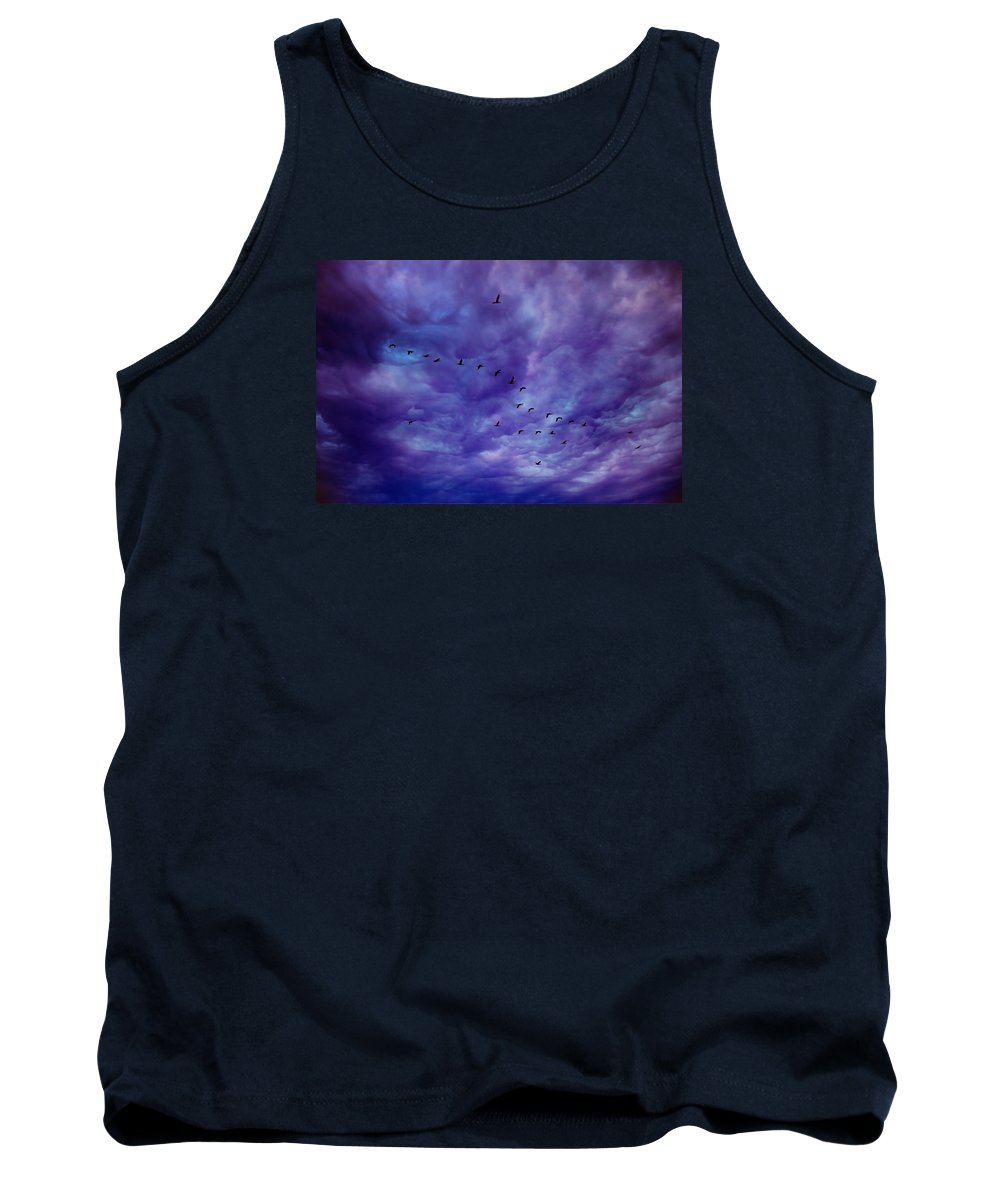 Birds Tank Top featuring the photograph Before It Storms by Iryna Goodall