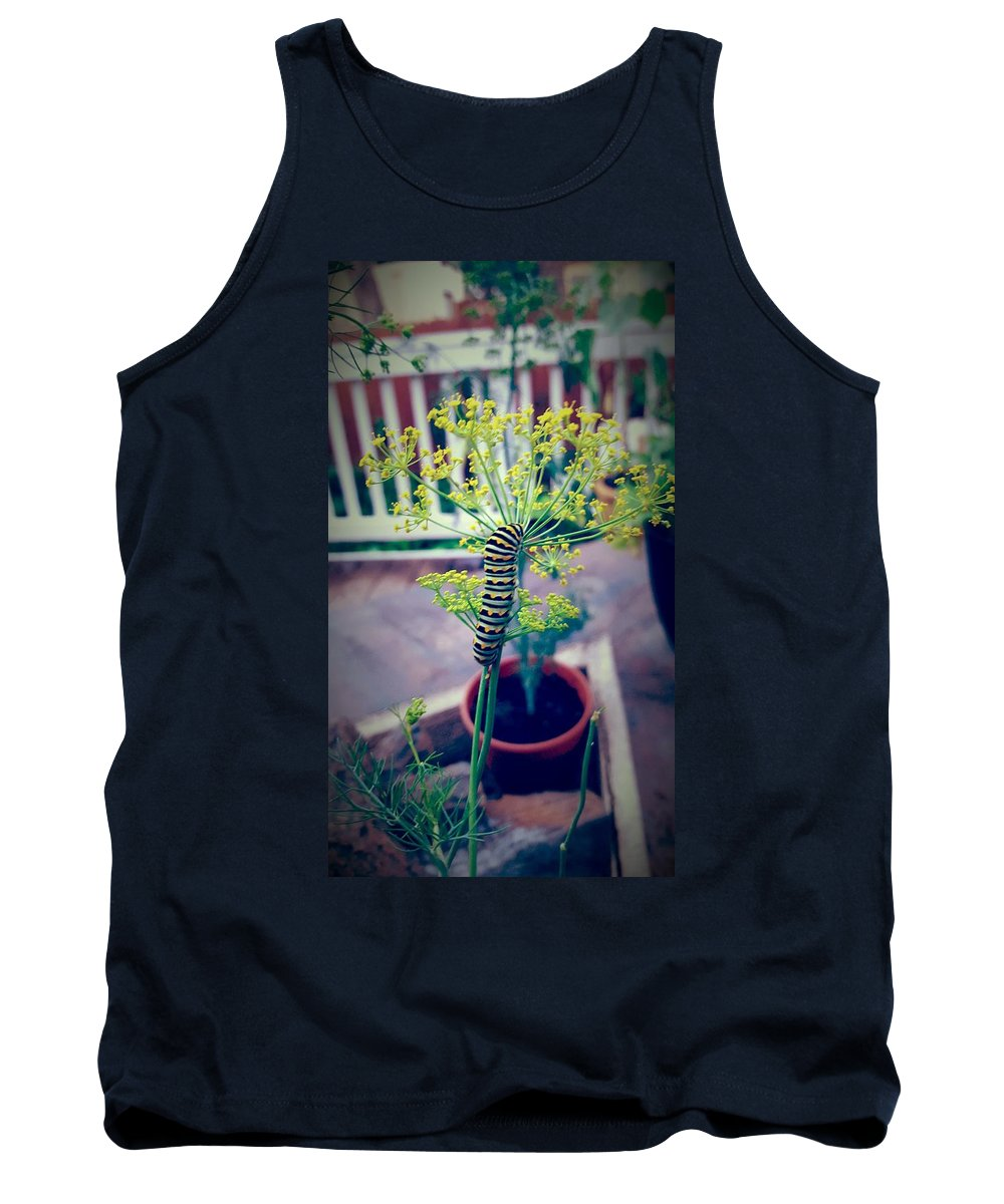 Black Swallowtail Tank Top featuring the photograph Black Swallowtail by David McGill