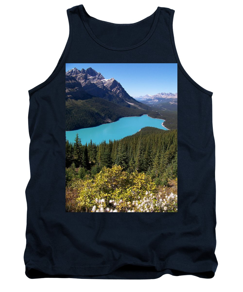 Scenic Tank Top featuring the photograph Blue Wolf In The Valley by Greg Hammond