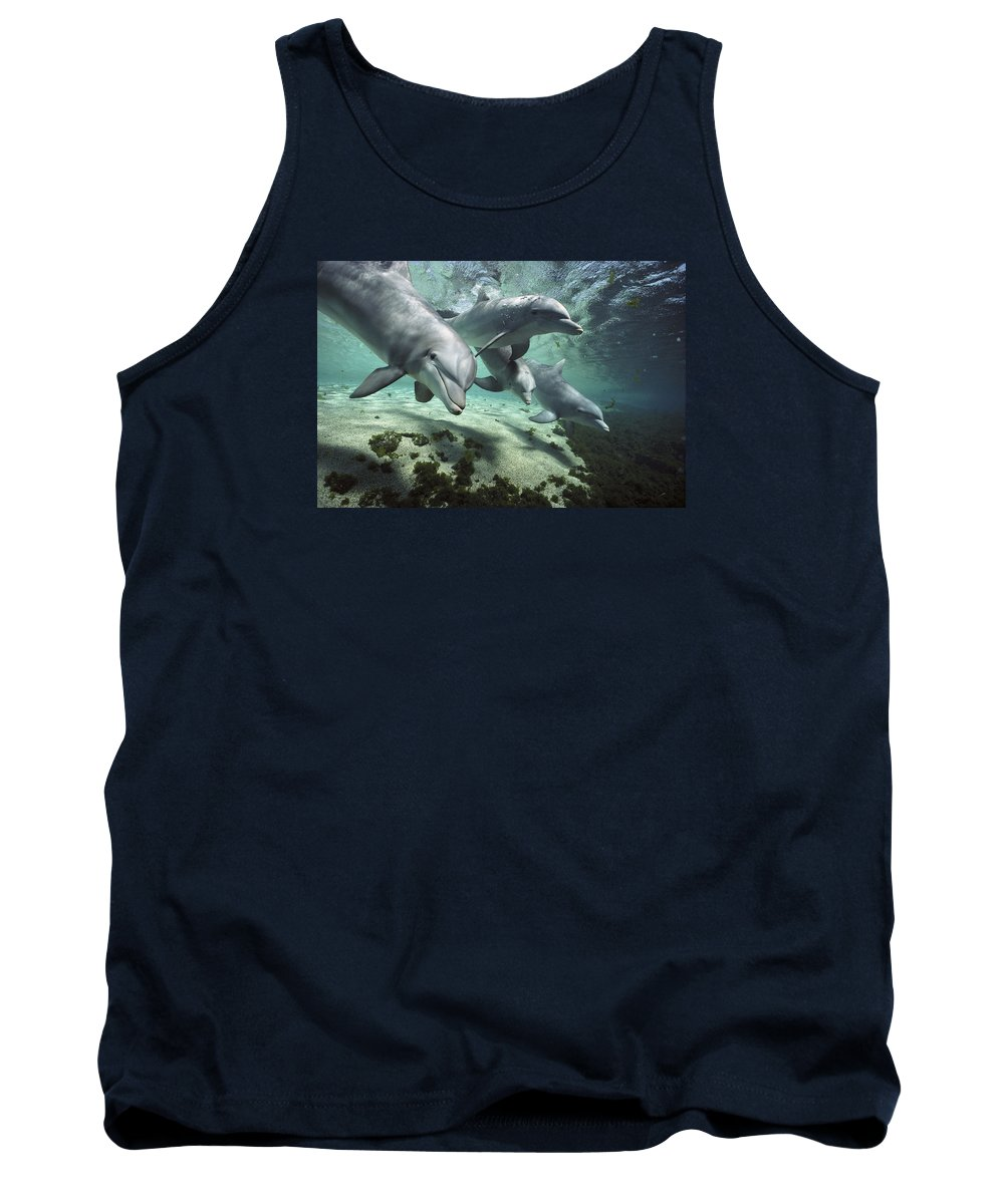 00082400 Tank Top featuring the photograph Four Bottlenose Dolphins Hawaii by Flip Nicklin