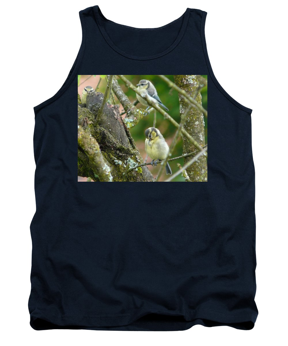 Bird Tank Top featuring the photograph Busy Tree by Valerie Ornstein