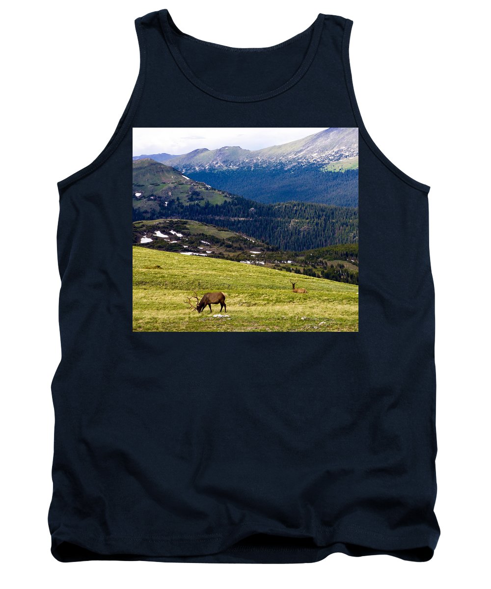Americana Tank Top featuring the photograph Colorado Elk by Marilyn Hunt