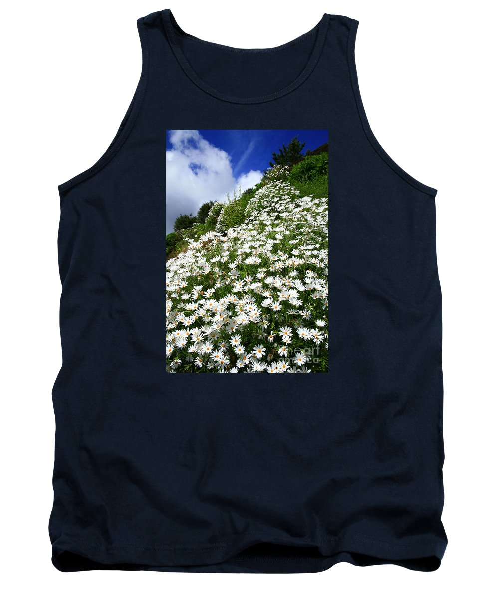 Countryside Tank Top featuring the photograph Daisies by Gaspar Avila