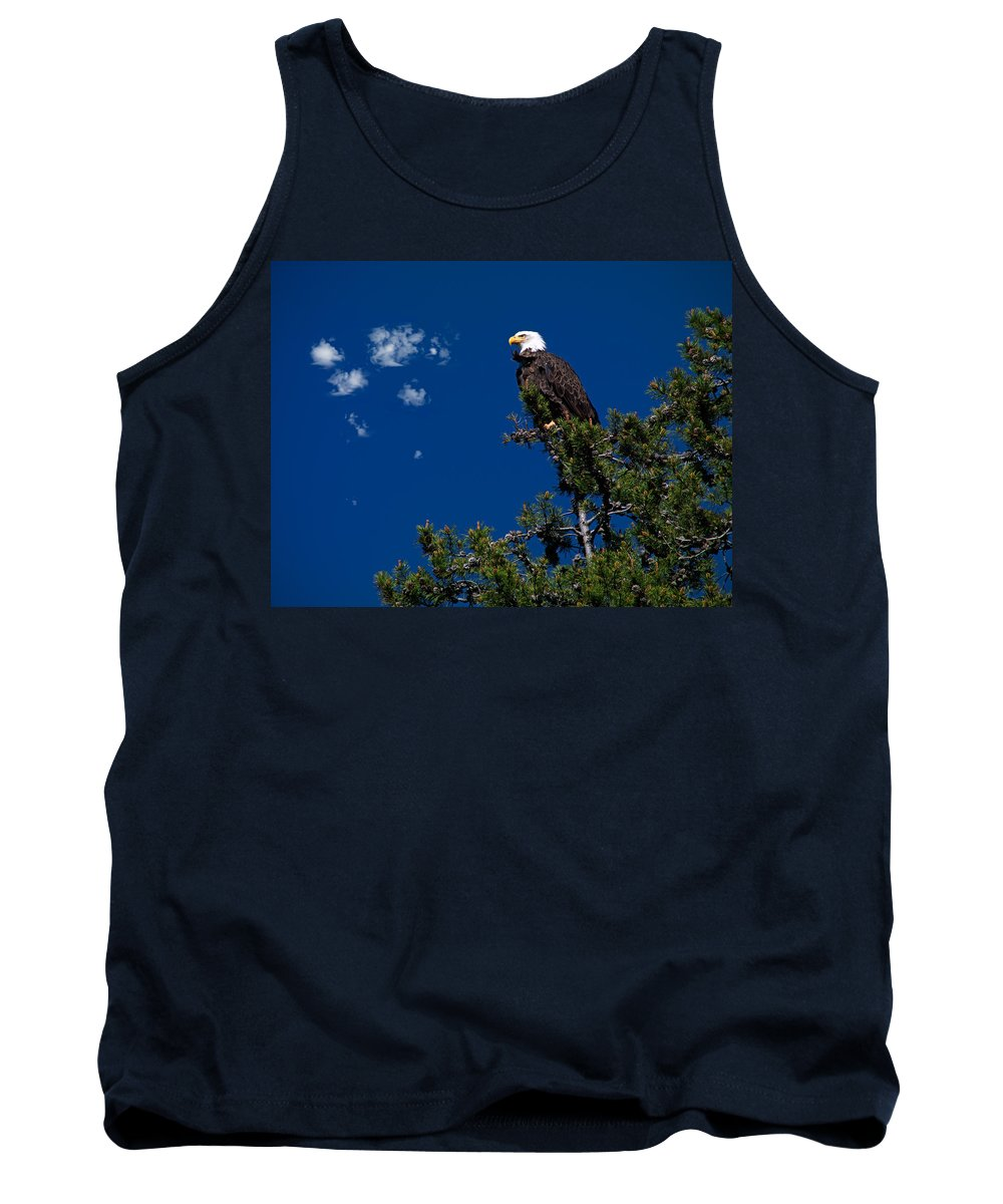 Eagle Tank Top featuring the photograph Eagle by Leland D Howard