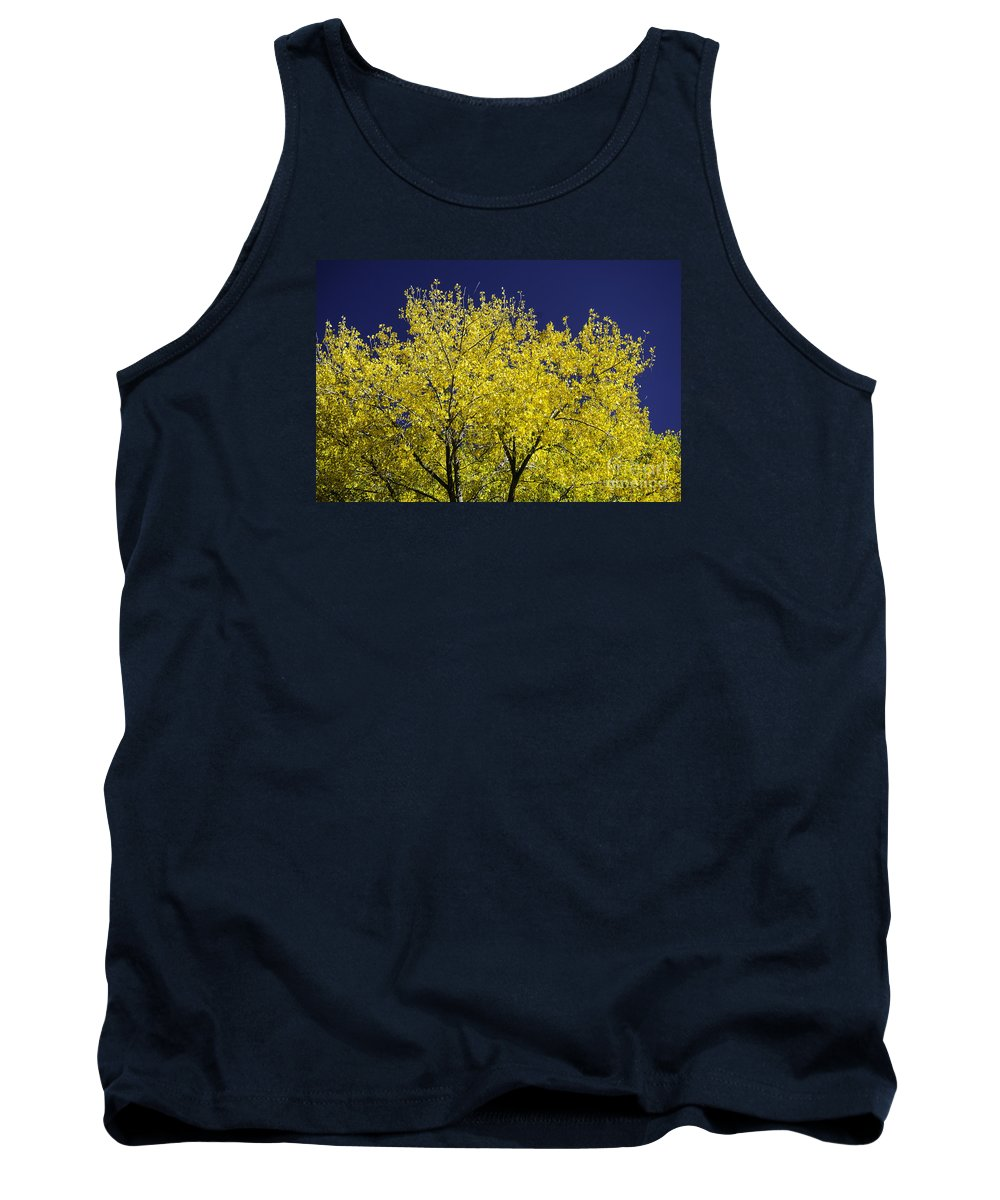 Gold Tank Top featuring the photograph Gold On Blue by Nick Boren