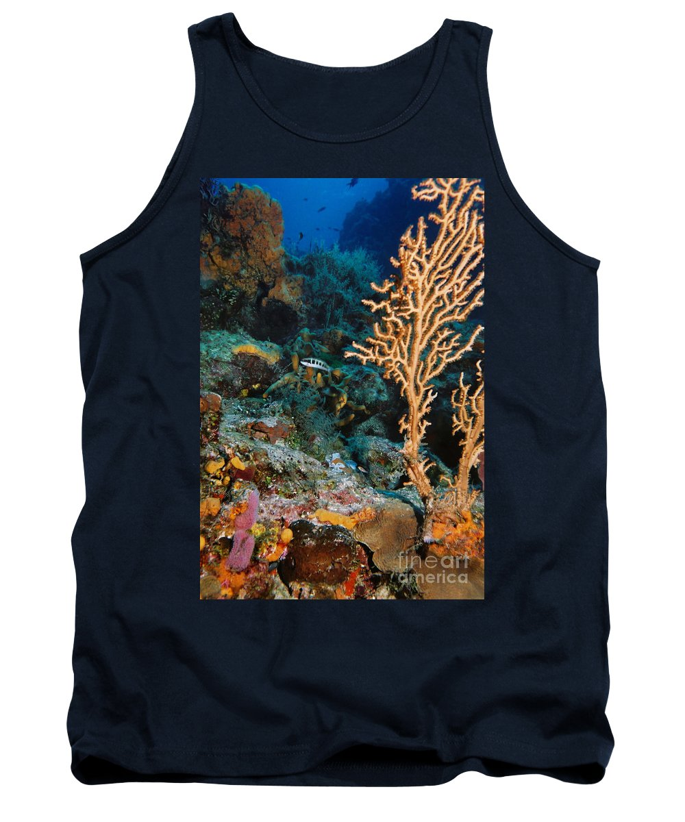 Gorgonian Tank Top featuring the photograph Gorgonian by Ray Manning