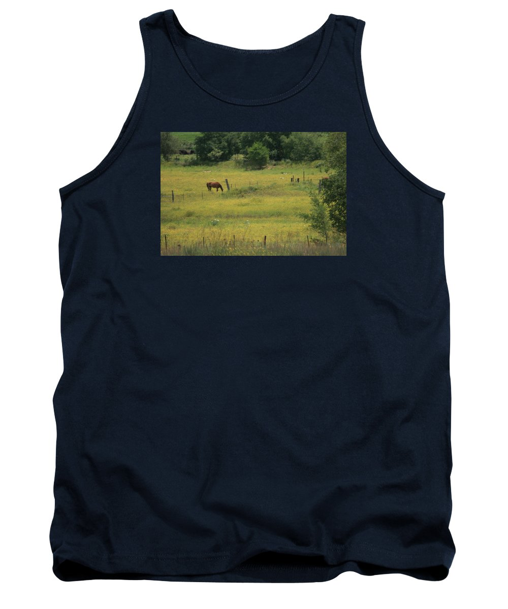 Horse Tank Top featuring the photograph Grazing Horse by Val Conrad