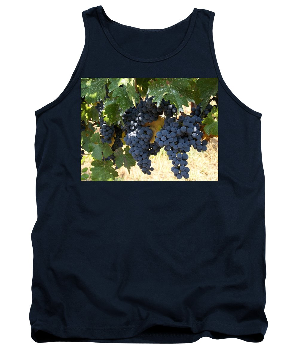 Grapes Tank Top featuring the photograph Harvest Time by Gale Cochran-Smith