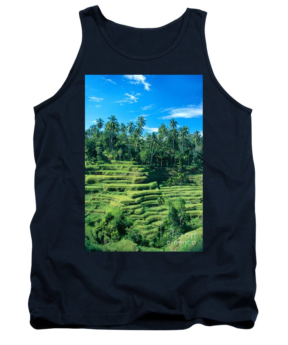 Agriculture Tank Top featuring the photograph Hillside In Indonesia by Gloria & Richard Maschmeyer - Printscapes