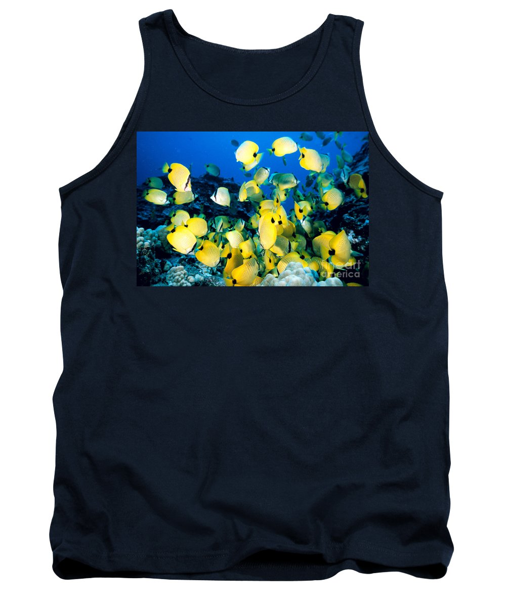 Animal Art Tank Top featuring the photograph Lined Butterflyfish by Bob Abraham - Printscapes