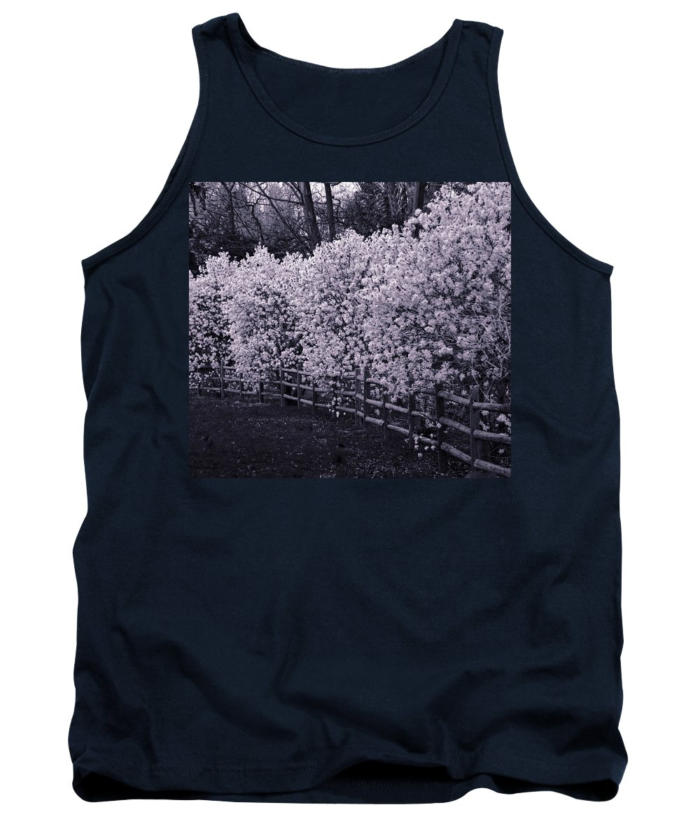 Magnolias Tank Top featuring the photograph Magnolias In Llewellyn Park, West Orange, New Jersey by Yuri Lev