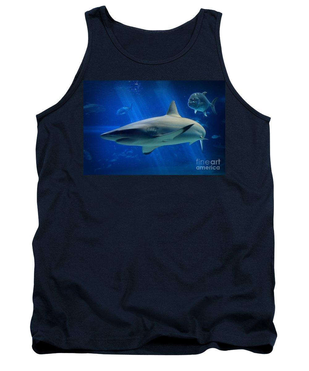 Hawaii Tank Top featuring the photograph Reef Shark by DJ Florek