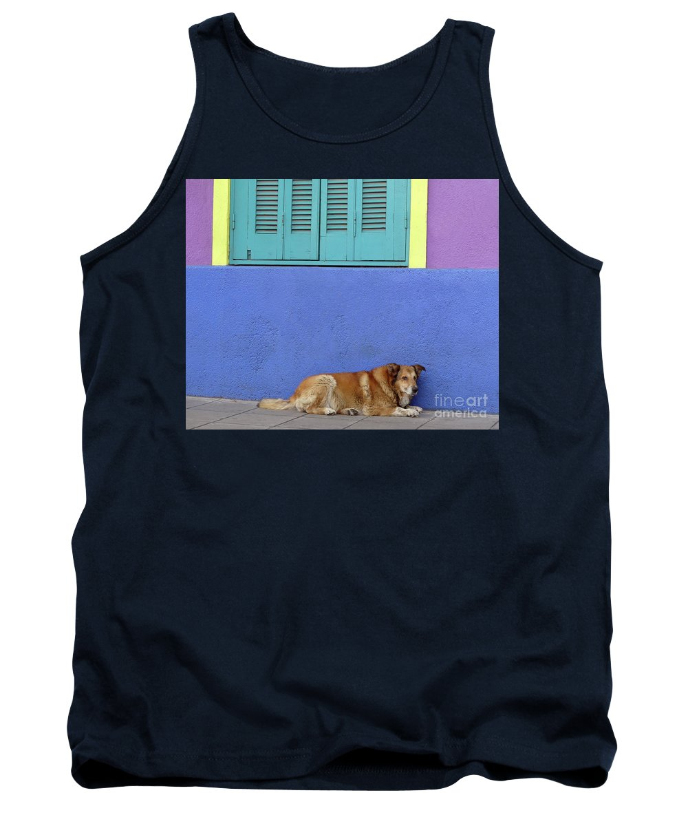 South America Tank Top featuring the photograph Resting In Boca by PJ Boylan